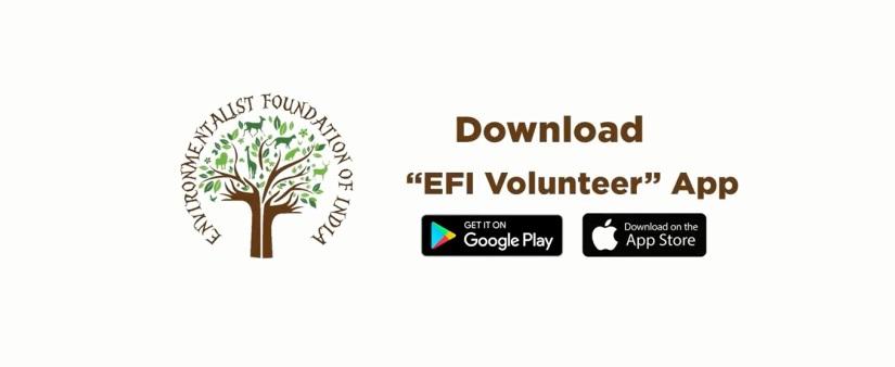 Volunteer App